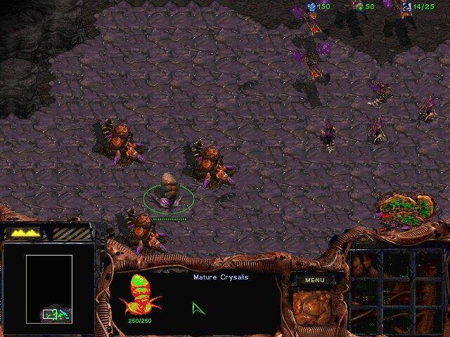 Файл:StarCraft Z03.jpg