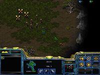 StarCraft P01x.jpg