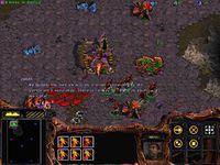 StarCraft Z01x.jpg